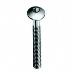 MUSHROOMHEAD SCREWS TYPE KTSP