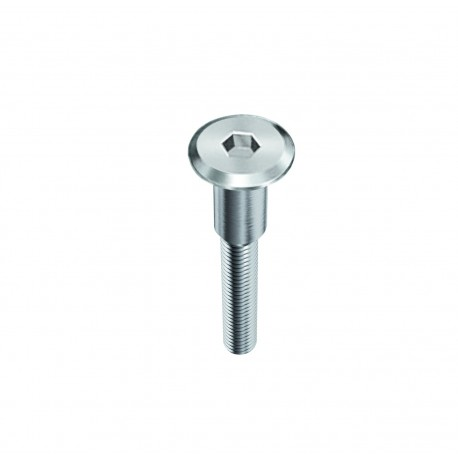 FLATHEAD SCREWS TYPE KFS