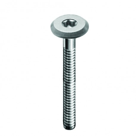 FLATHEAD SCREWS TYPE KFTX